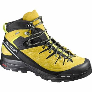 Sepatu Gunung Salomon X Alp Mid LTR GTX